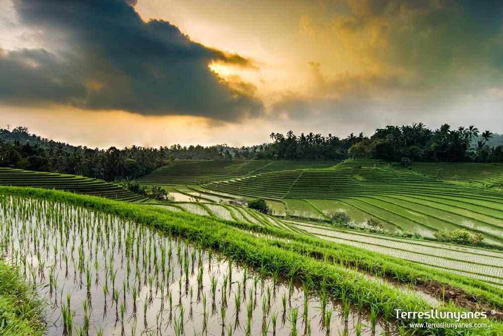 Viajes-indonesia-bali-02