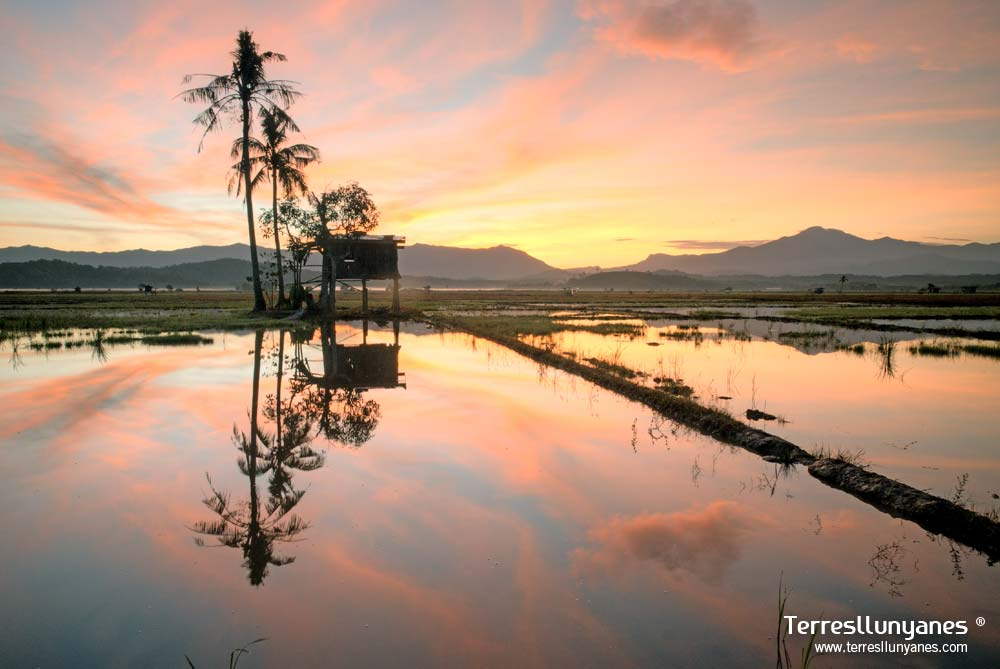 Viajes-indonesia-borneo-12