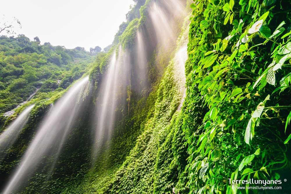 Viajes-indonesia-paraisos-12