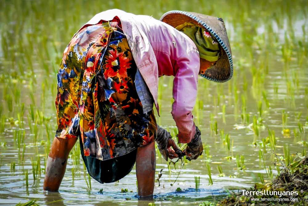 Viajes-indonesia-paraisos-13