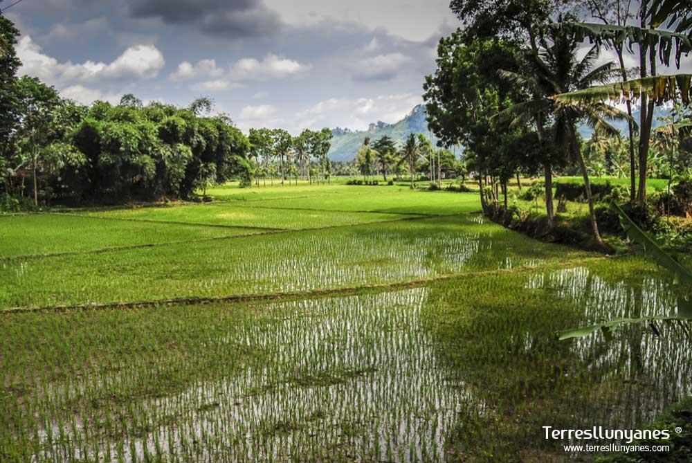 Viajes-indonesia-paraisos-14