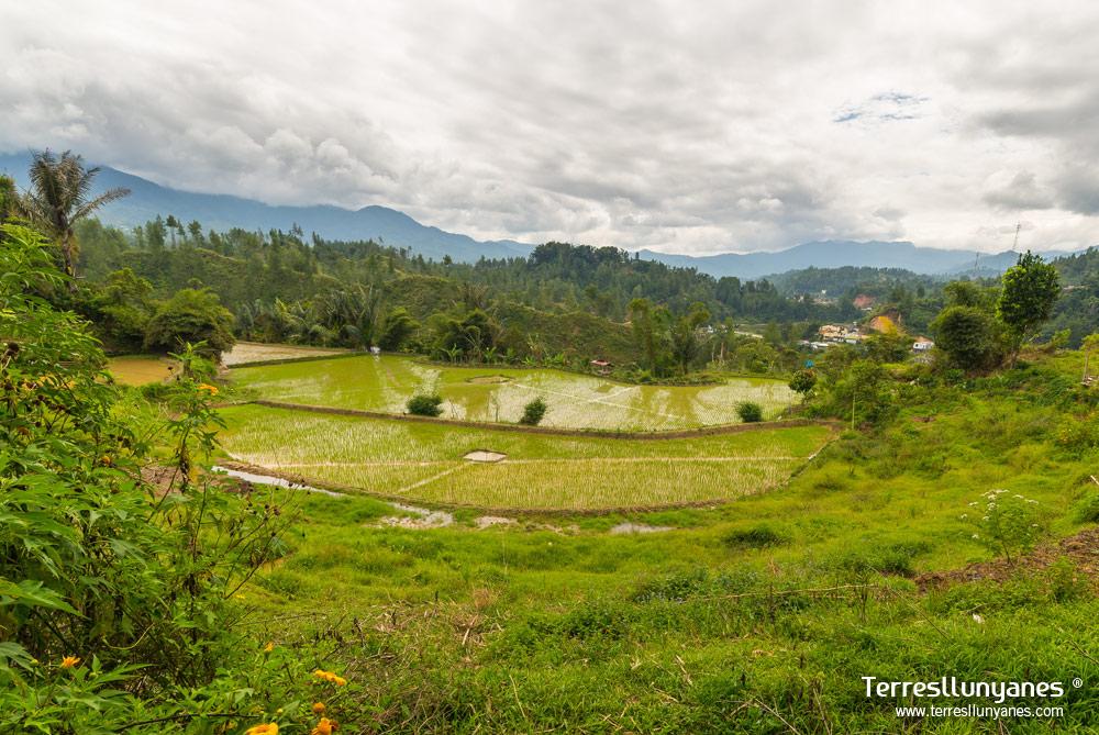 Viajes-indonesia-sulawesi-02