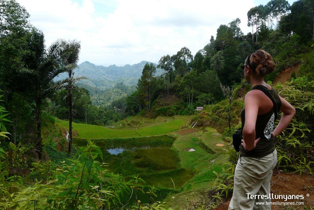 Viajes-indonesia-sulawesi-07