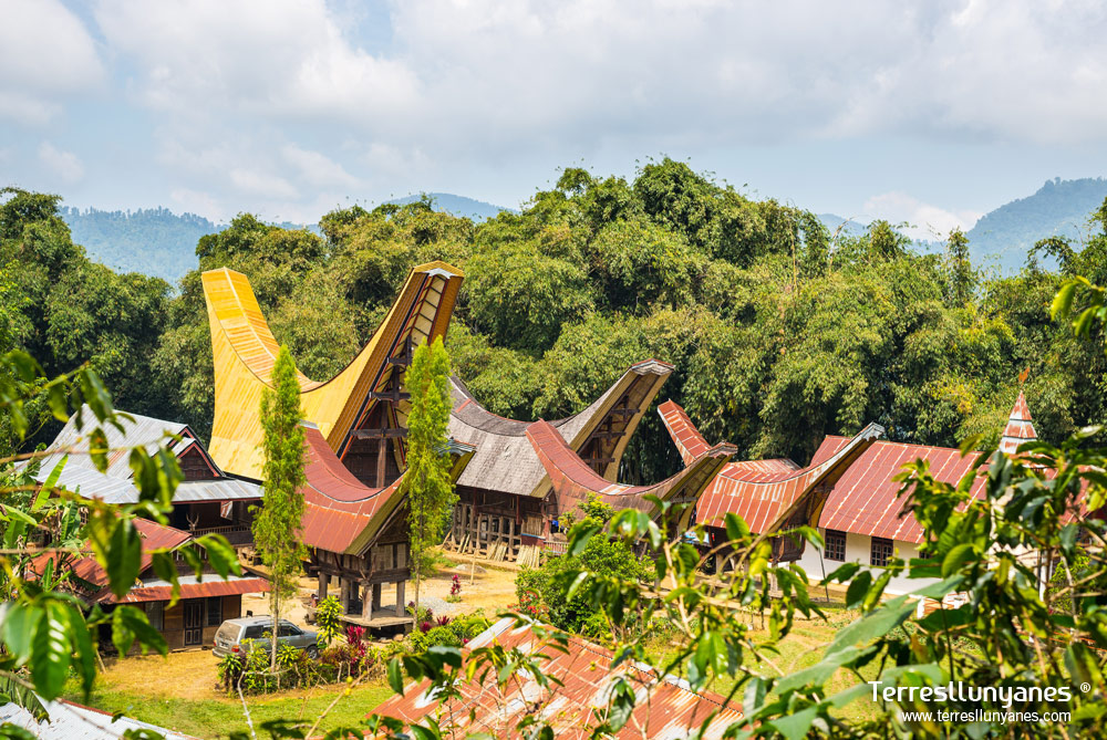 Viajes-indonesia-sulawesi-11